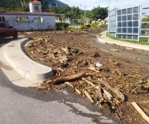 Trolebús Mérida desplegó trabajadores para atender emergencia en San Jacinto.