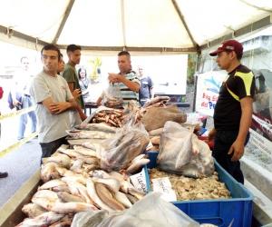 Se intensifican jornadas de distribución de alimentos entre los trabajadores de Trolebús Mérida
